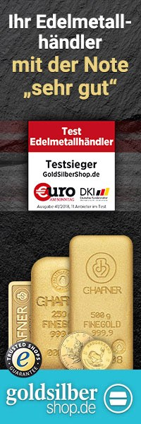 200 x 600 (Wide Skyskraper) Gold und Silber günstig