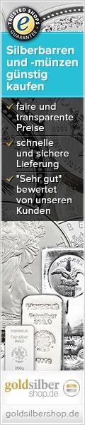120 x 600 (Skyskraper) Silberbarren und -münzen gü